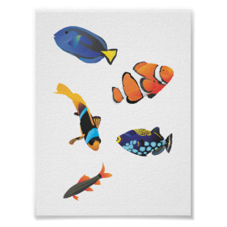 Free vector fishes.ai poster