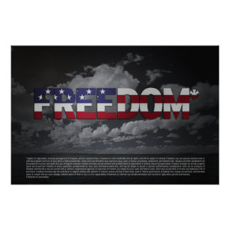 FREEDOM* ASTERISK 36x24 Pro-Liberty Poster