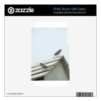 freedom bird iPod touch 4G skin
