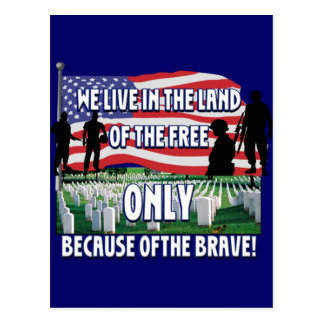 FREEDOM COSTS!  WE LIVE FREE BECAUSE OF SOLDIERS POSTCARD