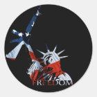 Freedom - Got guns? (Large Dark) Classic Round Sticker