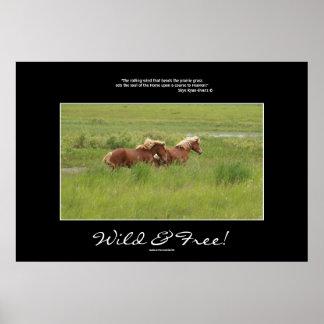 Freedom Horses Equine Photo Print & Poem
