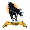 Freedom I shirt