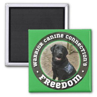 Freedom magnet