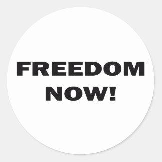 Freedom Now! Classic Round Sticker