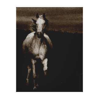 Freedom of the Horse Canvas Print