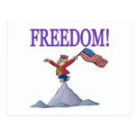 Freedom Post Card