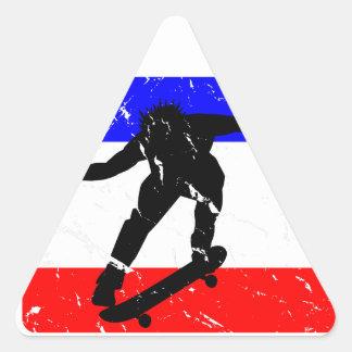 Freedom Skateboarding flair Triangle Sticker