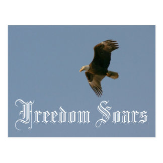 Freedom Soars Postcard