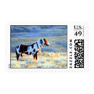 Freedom Stamp