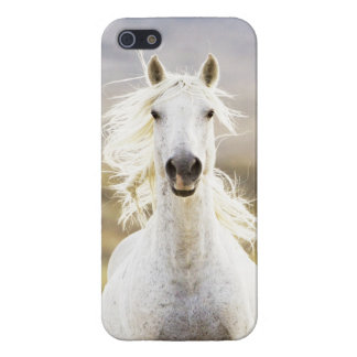 Freedom's Call Wild Horse IPhone  Case