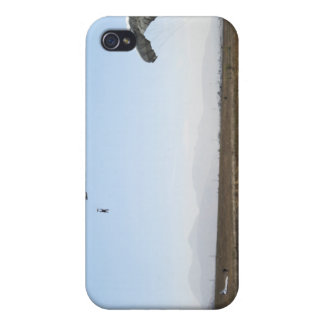 Freefall parachute jumpers iPhone 4 cases