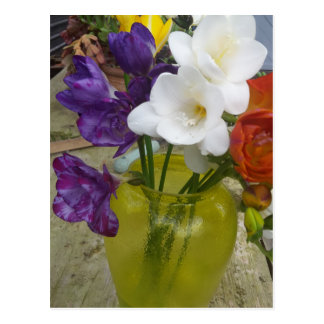 Freesia Flowers Postcard