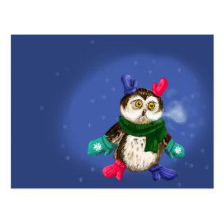 Freezing Owl Postcard