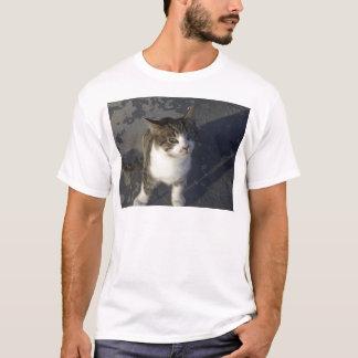 Freindly Kitten T-Shirt