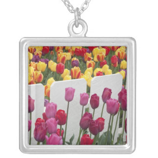 Fremont Solstice Parade Silver Plated Necklace