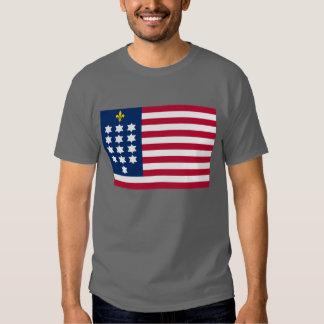French Alliance Flag T-Shirt