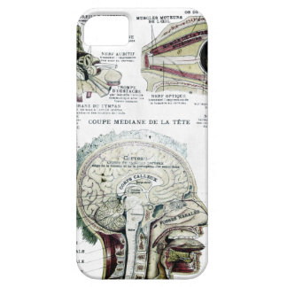 French Anatomy Case-Mate Case iPhone 5 Covers