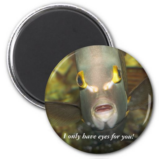 French Angelfish, with Caption Refrigerator Magnet