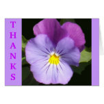 French Blue Purple Pansy Greeting Cards