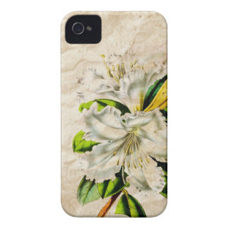 french botanical art country cottage vintage lily Case-Mate iPhone 4 case