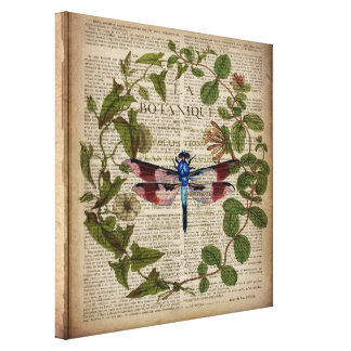 french botanical art vintage dragonfly canvas print