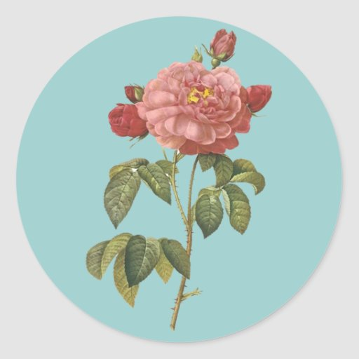 French Botanical Beauty *Vintage Flowers* Classic Round Sticker
