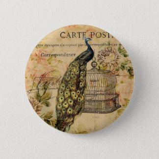 french botanical floral birdcage vintage peacock pinback button