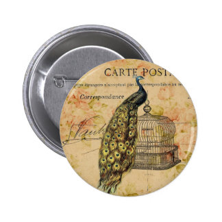 french botanical floral birdcage vintage peacock pinback button