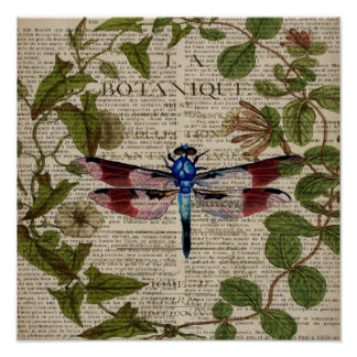 french botanical leaves modern vintage dragonfly poster