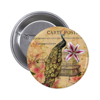 french botanical lily modern vintage peacock pinback button
