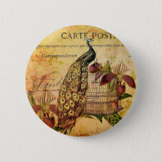 French Botanical orchid modern vintage peacock Button