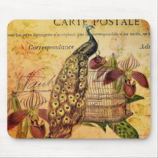 French Botanical orchid modern vintage peacock Mouse Pad