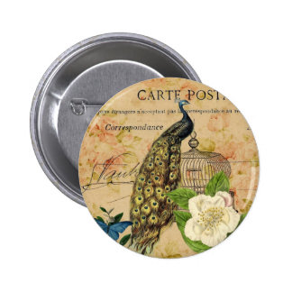 french botanical rose birdcage vintage peacock pinback button