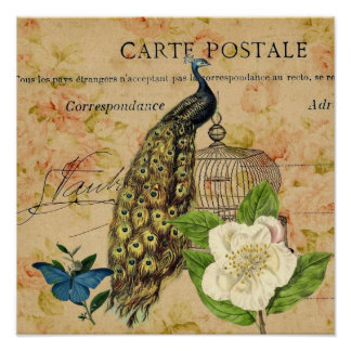 french botanical rose birdcage vintage peacock poster