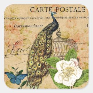 french botanical rose birdcage vintage peacock square sticker