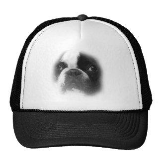 French Bull Dog Face Trucker Hat