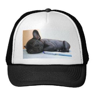 French Bull Dog Pet Puppy Cute Love Destiny Trucker Hat