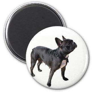 French bulldog 2 inch round magnet