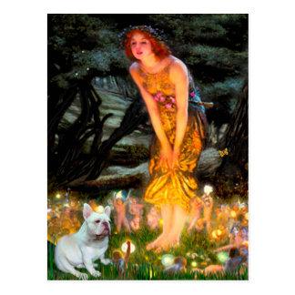 French Bulldog 4 - MidEve Postcard