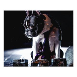 "French Bulldog Amateur Photographer Dog 4.5"" X 5.6"" Flyer"