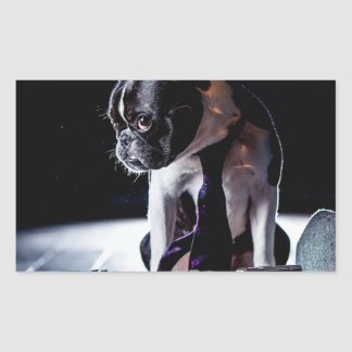 French Bulldog Amateur Photographer Dog Rectangular Sticker