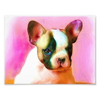 French Bulldog Art Photograph