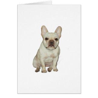 French  Bulldog (B) - fawn Cards