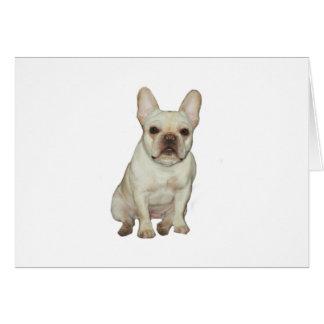 French  Bulldog (B) - fawn Greeting Card