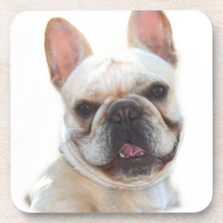 French bulldog beverage coaster