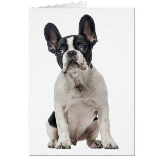 French Bulldog Black & White Puppy Dog Blank Card