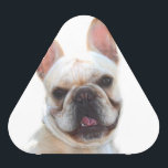 """French Bulldog Bluetooth Speaker<br><div class=""""desc"""">add text or upload your own image</div>"""