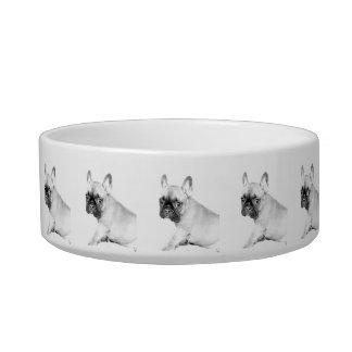 French Bulldog Bowl