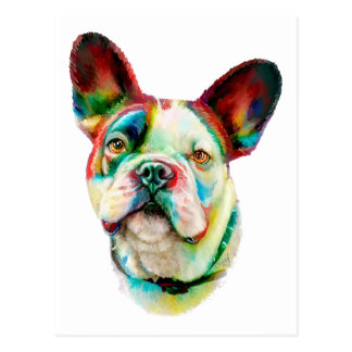French Bulldog Bright Bust Post Card